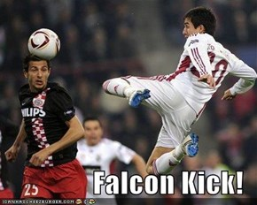 Epic Face Kick in 3..2..1..