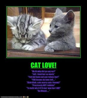 CAT LOVE!