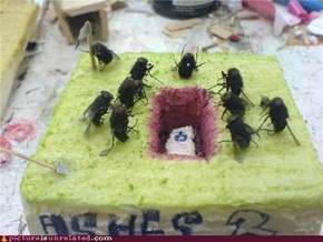 Funeral for a Fly