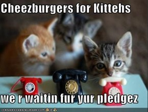 Cheezburgers for Kittehs  we r waitin fur yur pledgez