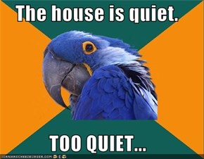 The house is quiet.  TOO QUIET...