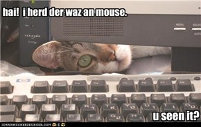 hai!  i herd der waz an mouse. u seen it?