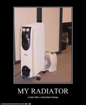 MY RADIATOR