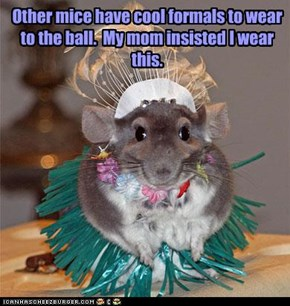Other mice have cool formals to wear to the ball.  My mom insisted I wear this.