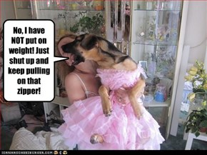No, I have NOT put on weight! Just shut up and keep pulling on that  zipper!