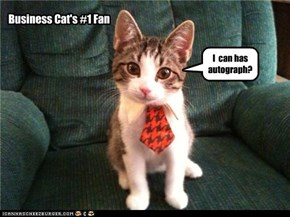 Business Cat's #1 Fan