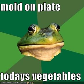 mold on plate  todays vegetables