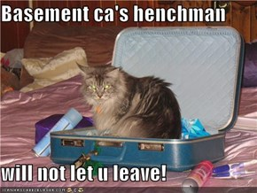 Basement ca's henchman  will not let u leave!