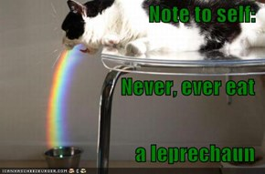 Note to self: Never, ever eat a leprechaun