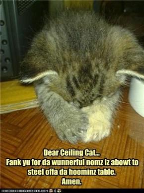 Dear Ceiling Cat...  Fank yu for da wunnerful nomz iz abowt to  steel offa da hoominz table.  Amen.