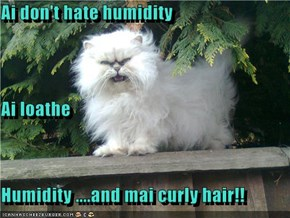 Ai don't hate humidity Ai loathe Humidity ....and mai curly hair!!