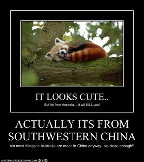 ACTUALLY ITS FROM  SOUTHWESTERN CHINA