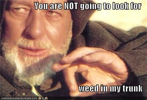 You are NOT going to look for  weed in my trunk