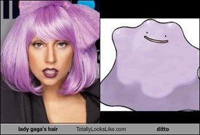 lady gaga's hair Totally Looks Like ditto