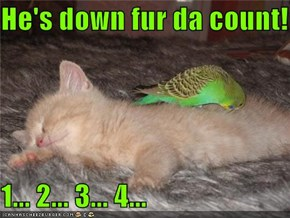 He's down fur da count!  1... 2... 3... 4...