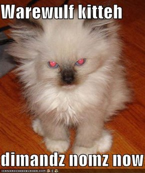 Warewulf kitteh  dimandz nomz now