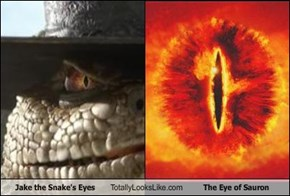 Jake the Snake's Eyes Totally Looks Like The Eye of Sauron