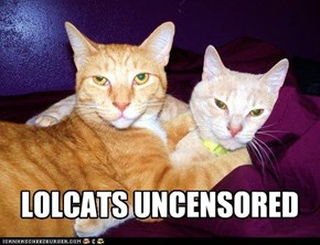 LOLCATS UNCENSORED
