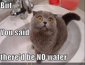 But. You said there'd be NO water