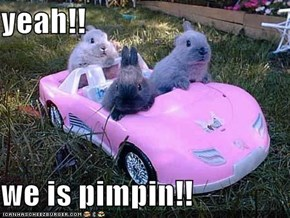 yeah!!  we is pimpin!!