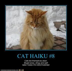 CAT HAIKU #8