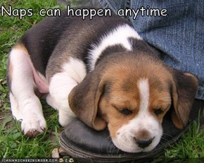 Naps can happen anytime
