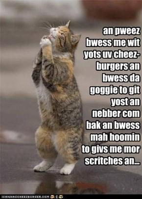 an pweez bwess me wit yots uv cheez-burgers an bwess da goggie to git yost an nebber com bak an bwess mah hoomin to givs me mor scritches an...