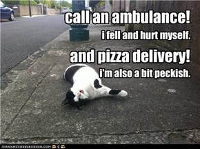 call an ambulance!