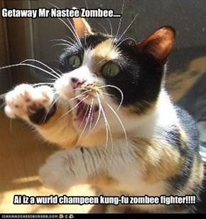 Getaway Mr Nastee Zombee....