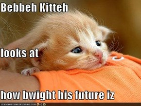 Bebbeh Kitteh looks at how bwight his future iz