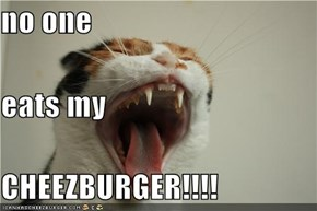 no one eats my CHEEZBURGER!!!!