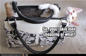 So...youz takin meh shopping or what?