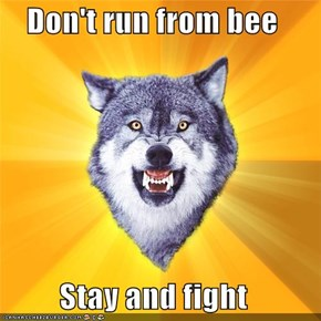 Courage Wolf: Don't run from bee