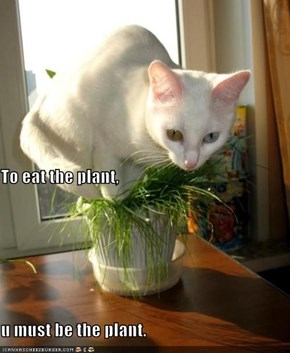 To eat the plant, u must be the plant.