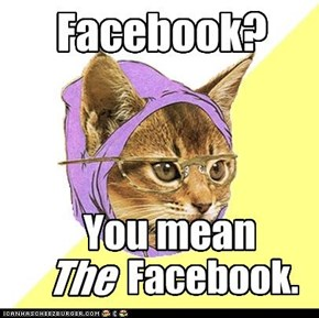 "Hipster Kitty: Knew this before ""The Social Network"""