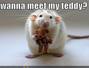 wanna meet my teddy?