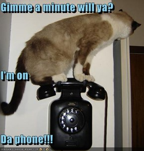 Gimme a minute will ya? I'm on Da phone!!!