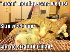 *moan* mondayz canz we just Skip week dayz And go strait to fridayz
