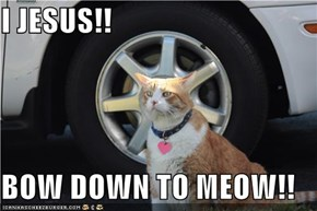 I JESUS!!  BOW DOWN TO MEOW!!