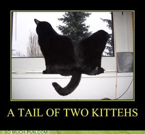 A Tail of Two Kittehs