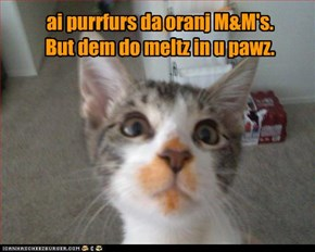 ~ Dey meltz in u pawz! ~