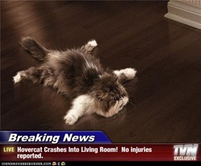 Breaking News - Hovercat Crashes Into Living Room!  No injuries reported.