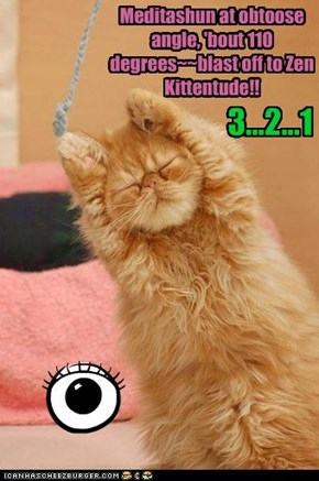 Meditashun at obtoose angle, 'bout 110 degrees~~blast off to Zen Kittentude!!