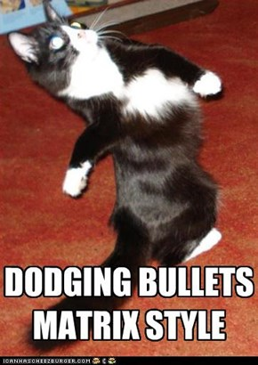 Neo Cat dodges invisible bullets