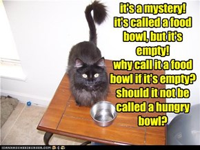 it's a mystery! it's called a food bowl, but it's empty! why call it a food bowl if it's empty? should it not be called a hungry bowl?