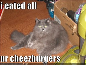 i eated all  ur cheezburgers