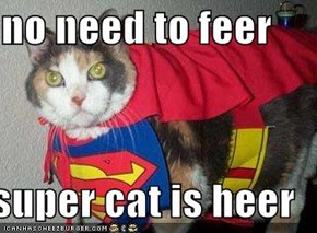 no need to feer  super cat is heer