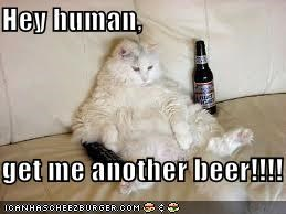 Hey human,  get me another beer!!!!