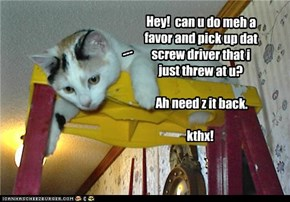 Hey!  can u do meh a favor and pick up dat screw driver that i just threw at u?    Ah need z it back.  kthx!