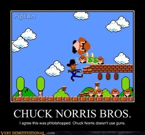 CHUCK NORRIS BROS.